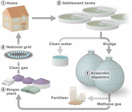 Uk rete di biogas da acque reflue domestiche for Trattamento acque reflue domestiche
